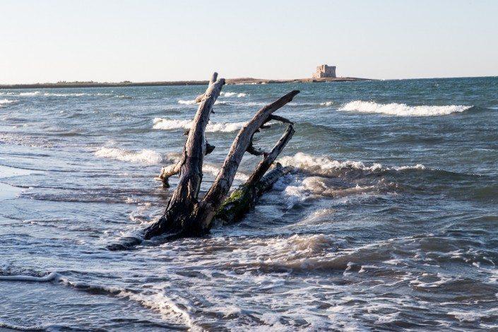 Centro Velico Torre Guaceto - Riserva naturale ed area marina protetta